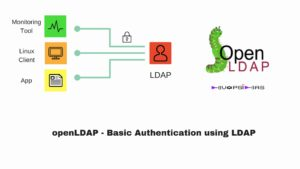 Basic Authentication using LDAP