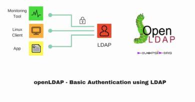 Basic Authentication using LDAP